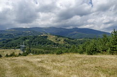 Electric power transmission line of advance summer. Plana mountain, Bulgaria Stock Image