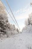 Electric power transmission in winter wood Stock Photo
