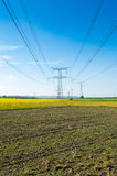Electric pylon. Front rapeseed field Stock Photo