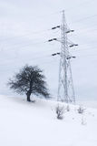 Electric pylon with tree Stock Photo