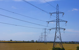 Electric pylons in a field Stock Photography
