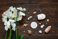 Electric shaver depilator with orchids and shells on dark wooden. Background. Hygiene skin body care concept. Hair removal. Beauty and skin body care concept Royalty Free Stock Photography