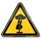 Electric shock and lightning in a tree Royalty Free Stock Photo