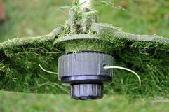 Electric spit with a thread and a protective casing covered. Part of the electric spit with a thread and a protective casing covered with cut grass. Close up Stock Image