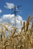 Electric Tower. Over a wheat farm Stock Photo