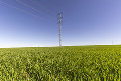 Electric tower in green field Royalty Free Stock Photos