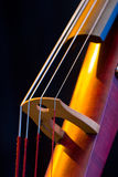 Electric Upright Bass Closeup Royalty Free Stock Images