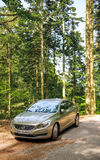 Electric Volvo Limousine in forest Stock Image