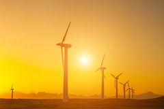 Electric wind turbines farm silhouettes on sun background Stock Images