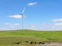 Electric Windmills Royalty Free Stock Photos