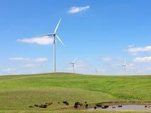 Electric Windmills Royalty Free Stock Photos