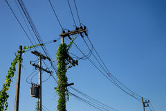 Electric wire Stock Images