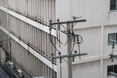 Electric wire post and building Royalty Free Stock Images