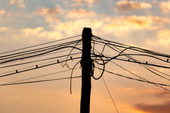 Electric wires at sunset as an background. Electric wires at sunset as an abstract background Stock Photography