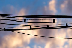 Electric wires at sunset as an background Royalty Free Stock Images