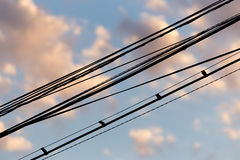 Electric wires at sunset as an background Stock Images