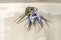 Electrical exposed connected wires protruding from socket on white wall. Electrical wiring installation. Finishing works in. Renovated apartment stock photography