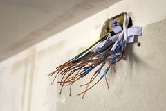 Electrical exposed connected wires protruding from socket on white wall. Electrical wiring installation. Finishing works in. Renovated apartment stock image