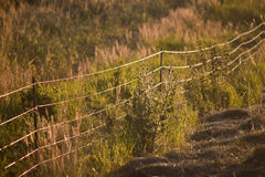 Electrical fence Stock Images
