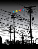 Electrical jungle and birds Royalty Free Stock Photography