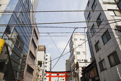 Electrical Lines and Torii Gate Between Multistory Buildings Stock Photos