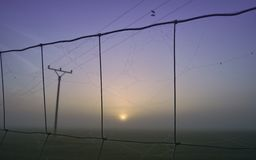 Electrical Mast in Sunrise Royalty Free Stock Photo