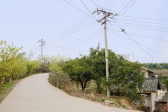 Electrical poles by curving countryroad in sunny spring Royalty Free Stock Images