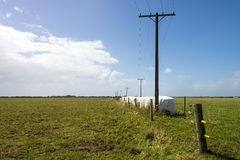 Electrical poles and wires with lining of hay bales Royalty Free Stock Photos