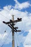 Electrical post by the road with power line cables, against blue Stock Photography
