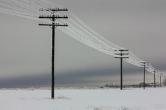Electrical power lines with hoarfrost on the wooden electric poles on countryside in the winter, stock photo