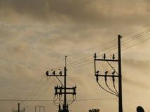 Electrical pylon Stock Photography