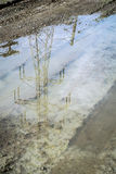 Electrical pylon reflexion. Electrical tower pylon reflection in a puddle Stock Image