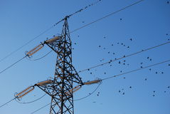 Electrical pylons Stock Images