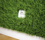 An electrical socket on a grass Royalty Free Stock Photography