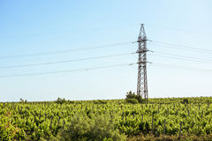 Electrical wire and big pillar at sunset in Moldova Stock Image