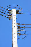 Electrical wire on pole. chaotic wire with nest on pole and blue sky background. Royalty Free Stock Photos