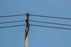 Electrical wire on pole. At the street Stock Photography