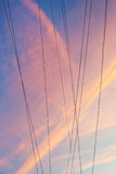 Electrical wires with pink sunset clouds Stock Images