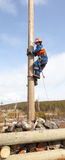 Electrician begins to climb on a power pole Royalty Free Stock Photos