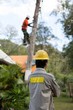 Electrician lineman repairman worker on electric post power pole Royalty Free Stock Image