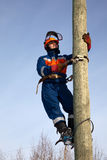 Electrician On A Pole Stock Photography