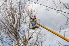 Electricians clean electric wires do tree. Trimming at height stock photos