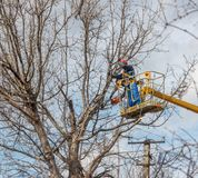 Electricians clean electric wires do tree. Trimming at height stock image