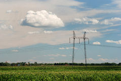 Electricity 03. High voltage electricity pylon and power lines on corn field Royalty Free Stock Image