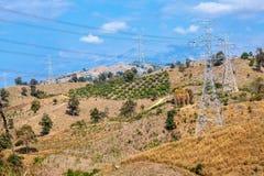 Electricity among farmland Royalty Free Stock Photo