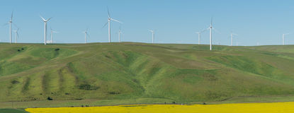 Electricity-generating wind turbines in Washington wheat field Royalty Free Stock Image