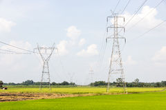Electricity high voltage power post. In paddy field Stock Photo
