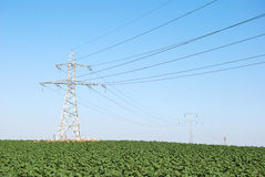 Electricity lines Royalty Free Stock Photo