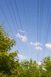 Electricity. Lines in the nature Royalty Free Stock Photo