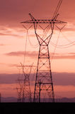 Electricity lines with sunset skies Stock Image